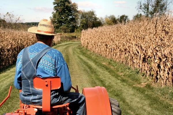 Ποιοι αγρότες απαλλάσσονται από την τήρηση βιβλίων