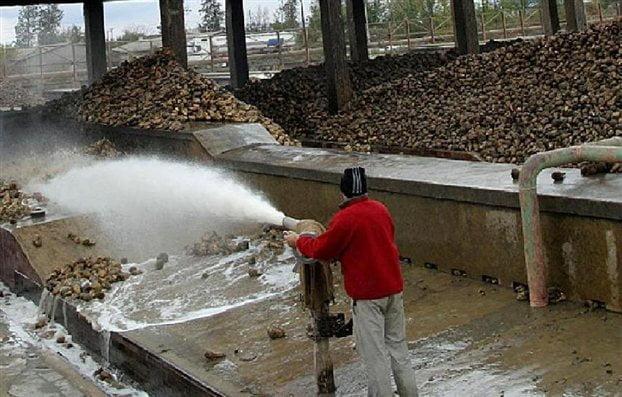 71 προσλήψεις στην Ελληνική Βιομηχανία Ζάχαρης (εργοστάσιο Ορεστιάδας)