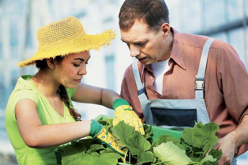 Κοινωφελής εργασία 2014: Οι 600 προσλήψεις που θα γίνουν στο υπ. Αγροτικής Ανάπτυξης