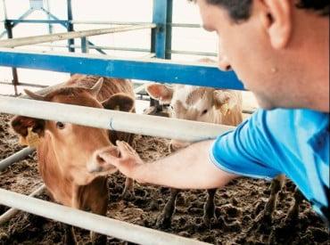 Πρόγραμμα υποτροφιών για νέους κτηνοτρόφους στην Αμερικανική Γεωργική Σχολή