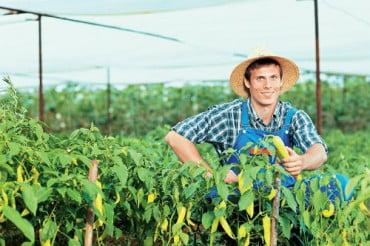 Ημερίδα για νέους αγρότες
