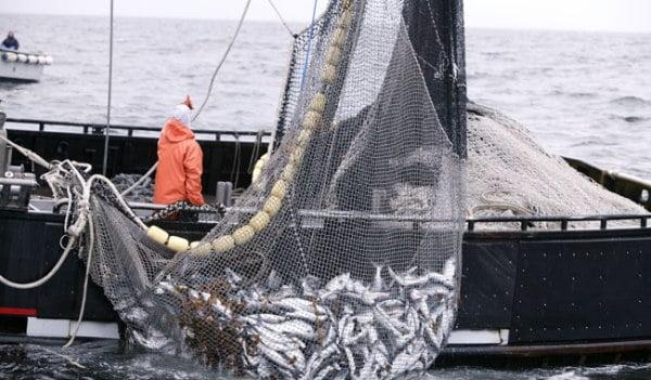 Τι θα γίνει με το κυνήγι και το ψάρεμα – Πότε θα επιτραπούν