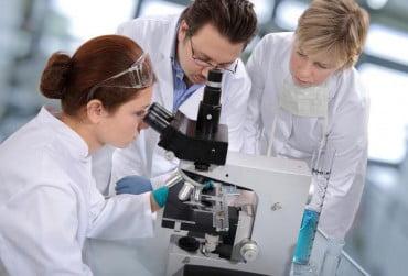 Προσλήψεις στον Ευρωπαϊκό Οργανισμό Χημικών Προϊόντων (ECHA)