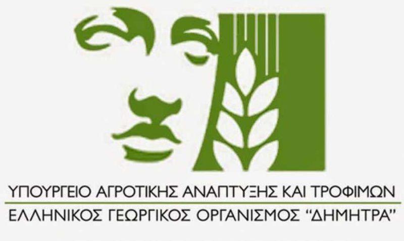 Elgo-Dimitra_aftodioikisi.jpg