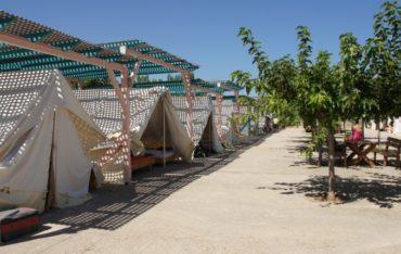 137 προσλήψεις στις παιδικές κατασκηνώσεις του Δήμου Αθηναίων